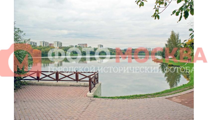 Нижний Царицынский (Шипиловский) пруд