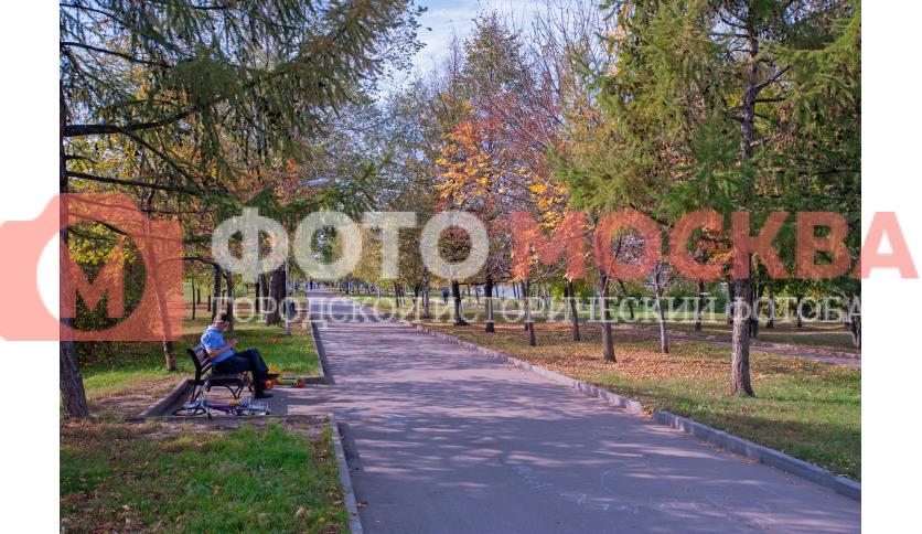 Дорожка в парке «Братеевская набережная»