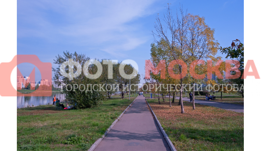 Тропы в парке «Братеевская набережная»