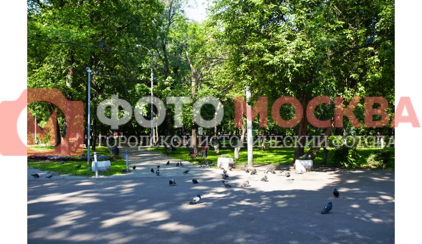 Дорожки в Делегатском парке
