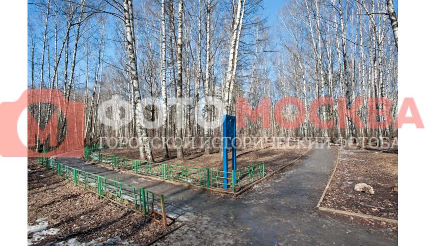 Лианозовский лесопарк