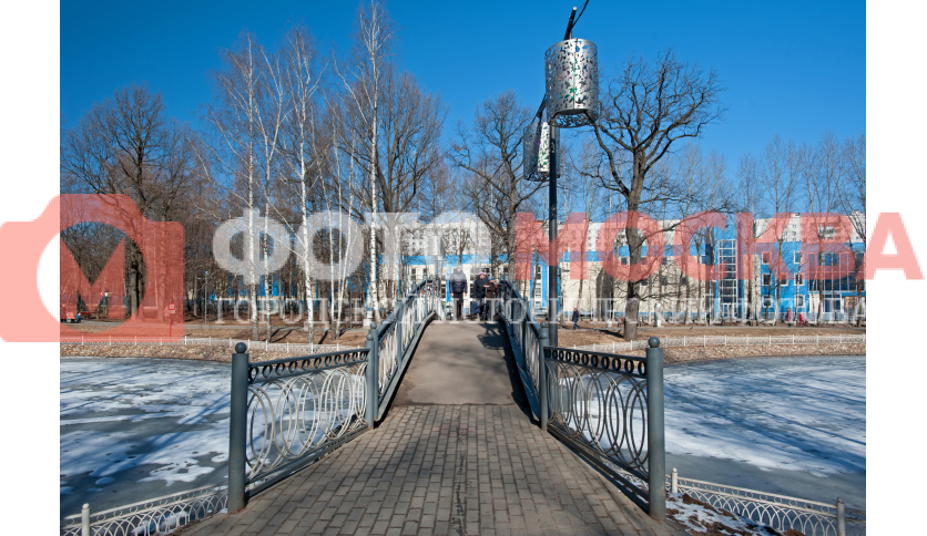Мост в Лианозовском лесопарке