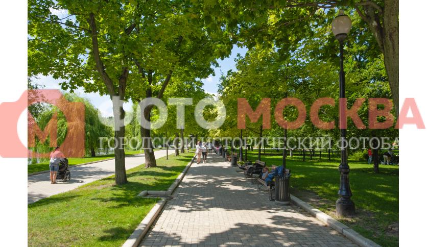 Тропинки в парке Новодевичьи Пруды