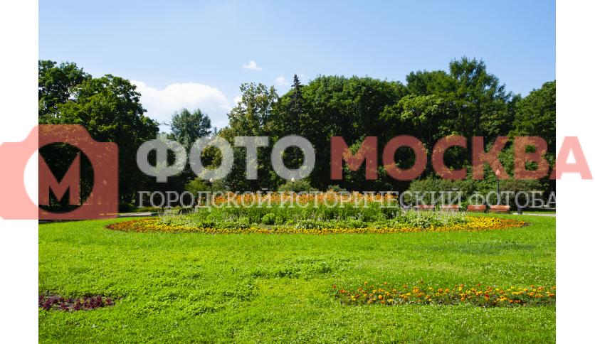 Клумба в парке Новодевичьи Пруды