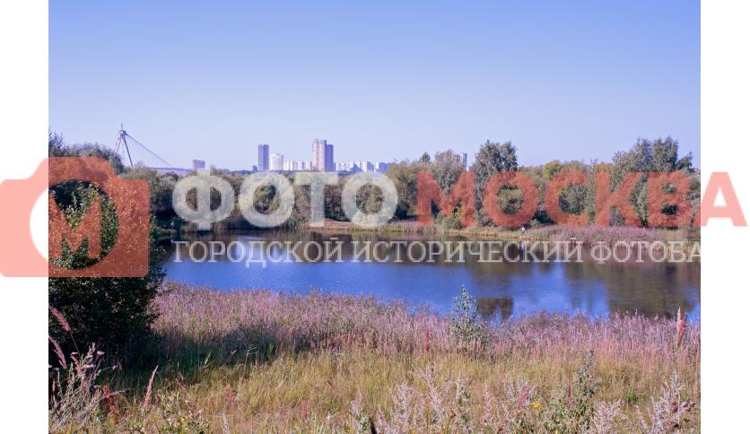 Восточный Татаровский пруд