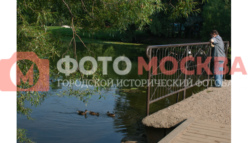 Шибаевский пруд