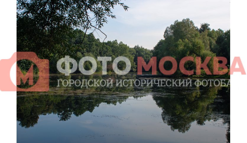 Нижний Кузьминский пруд