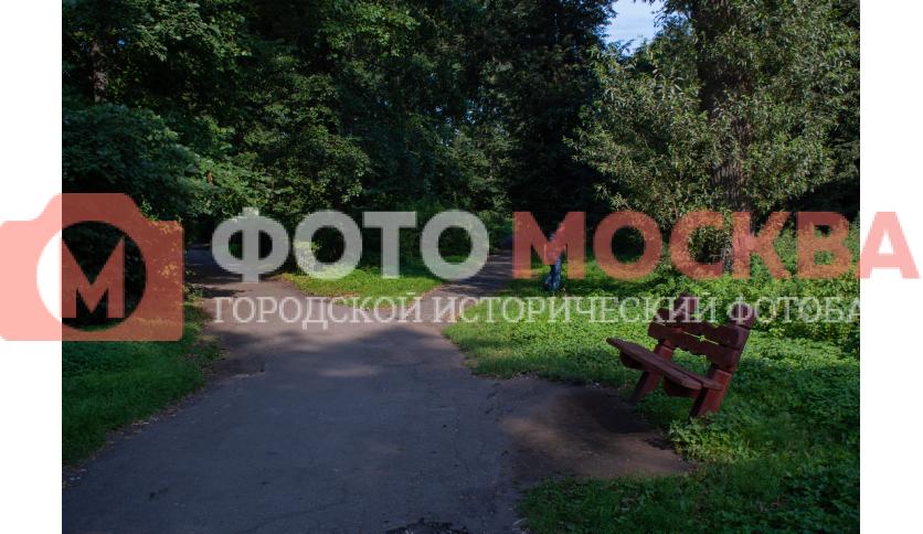 Тропинка в Кузьминках