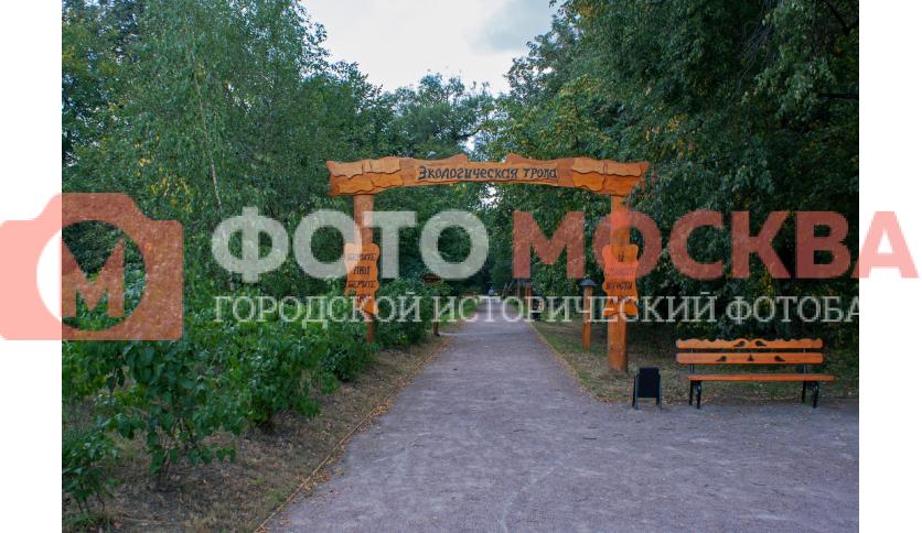 Экологическая тропа в Кузьминках