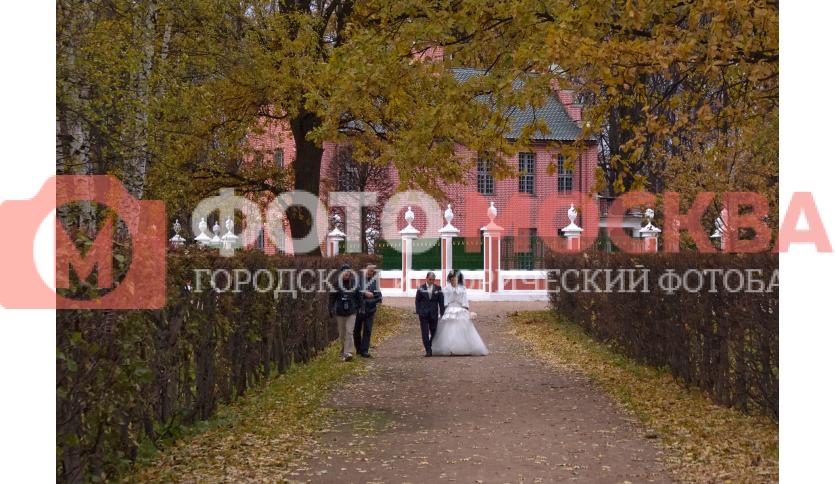Свадьбы в музее - усадьбе Кусково - не редкость