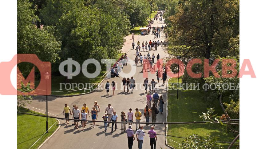 Центральная аллея Александровского сада