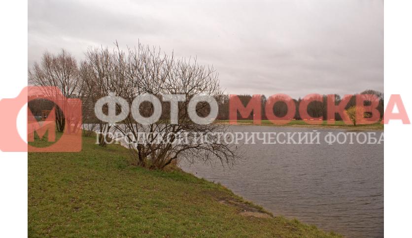 Восточный Терлецкий пруд