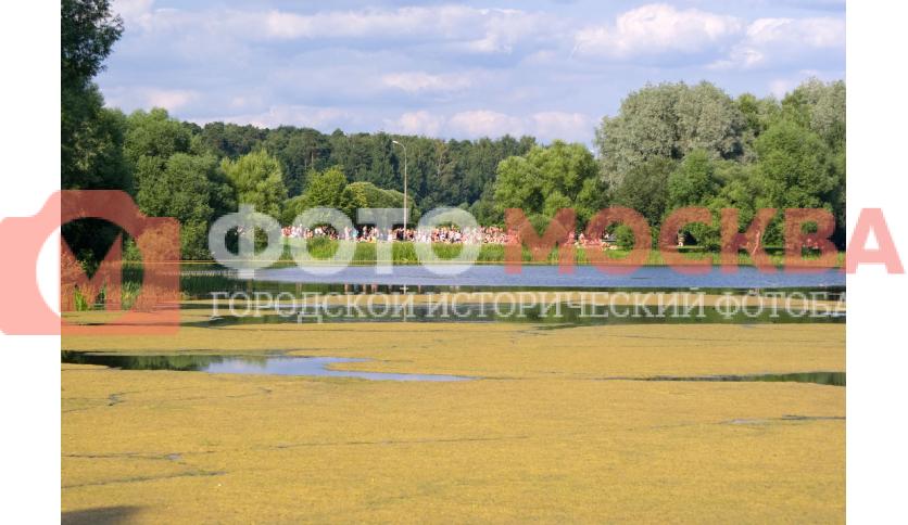 Пятый Иваньковский пруд в парке