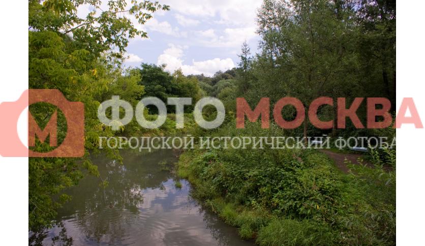 Река Химка в парке